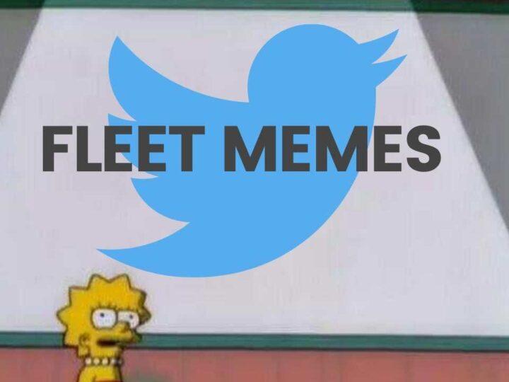twitter fleet memes