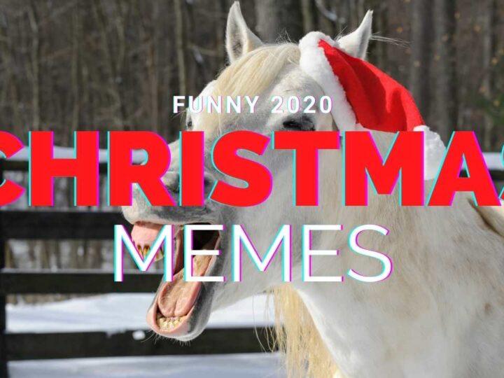 2020 christmas memes