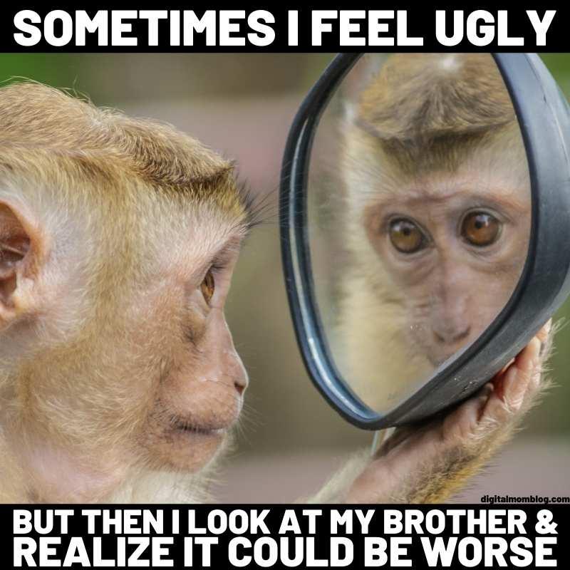ugly brother meme monkey meme