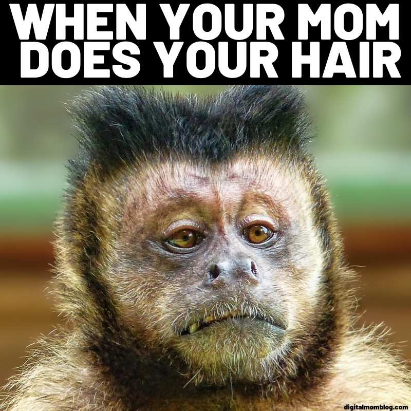 when your mom does your hair meme about monkey
