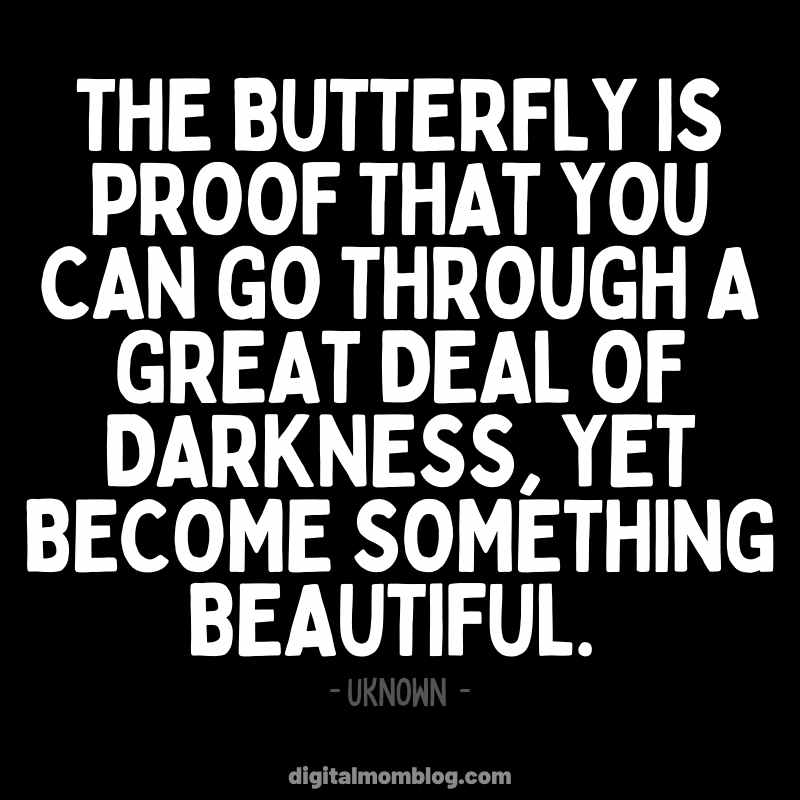 Butterfly Quote - New Year New You - Inspiration Motivation