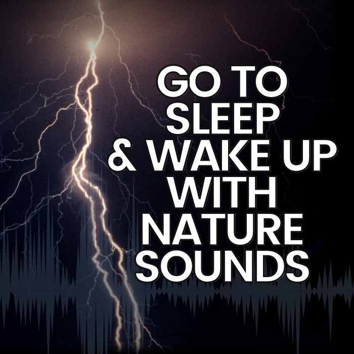 go to sleep and wake up with nature sounds