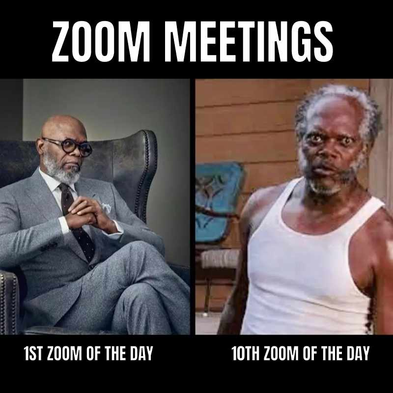 all day zoom meetings meme