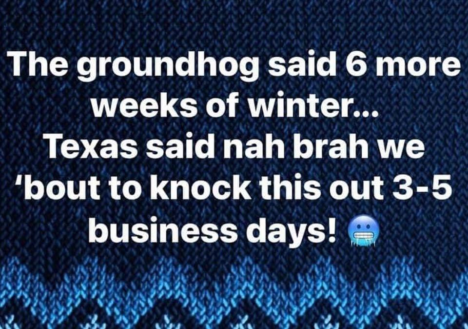 groundhog texas weather meme