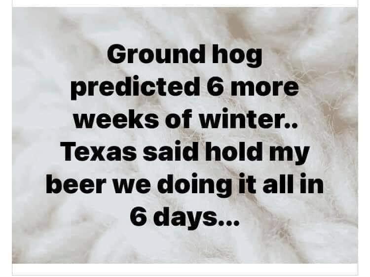 groundhog winter texas meme