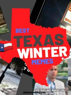 texas winter memes snow humor