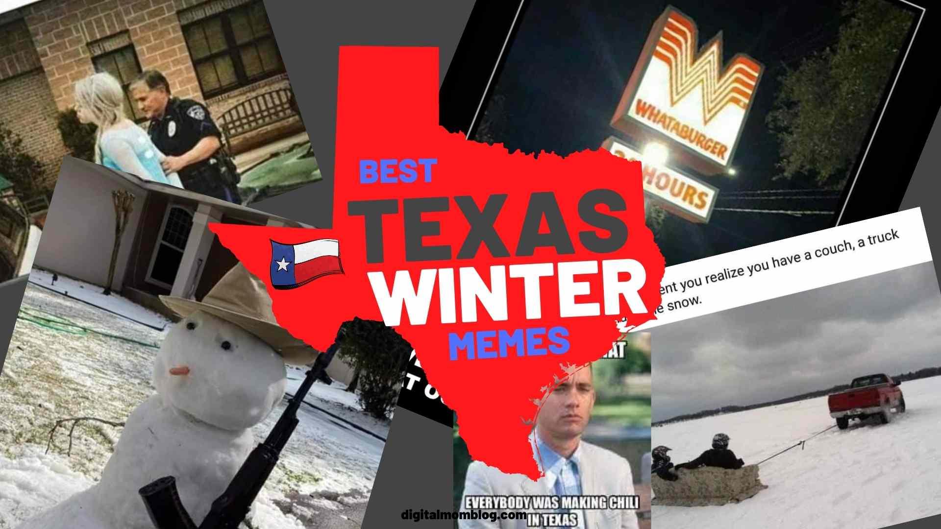 texas winter memes snow humor