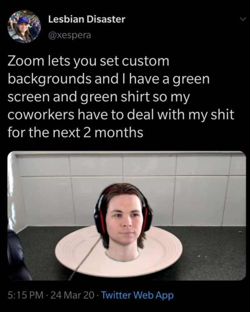virtual background zoom meeting meme
