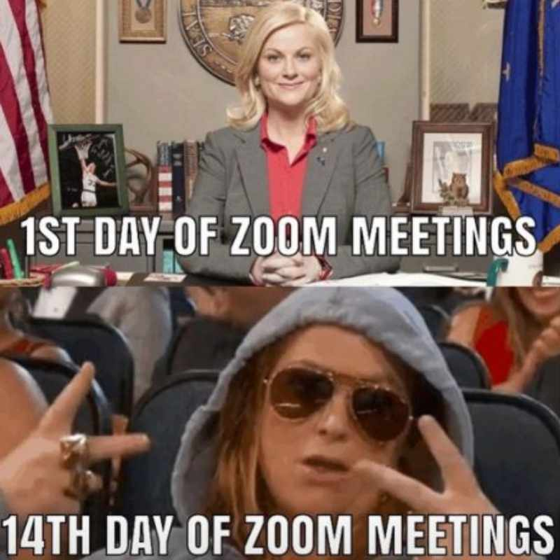 zoom meetings all day meme