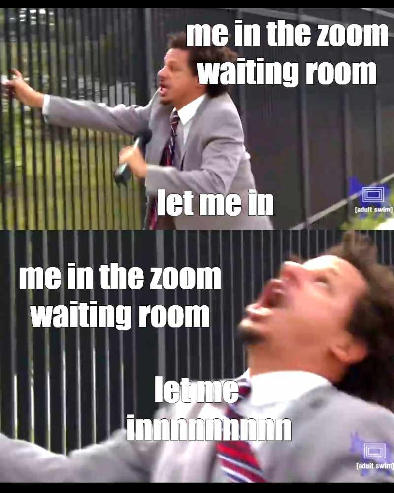 zoom waiting room meme