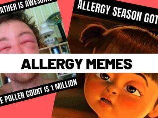 allergy meme